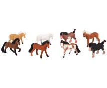 [Ce fel de cai cunoști?]